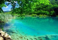 Plitvice-Lakes-National-Park-Croatia-75903-915x515